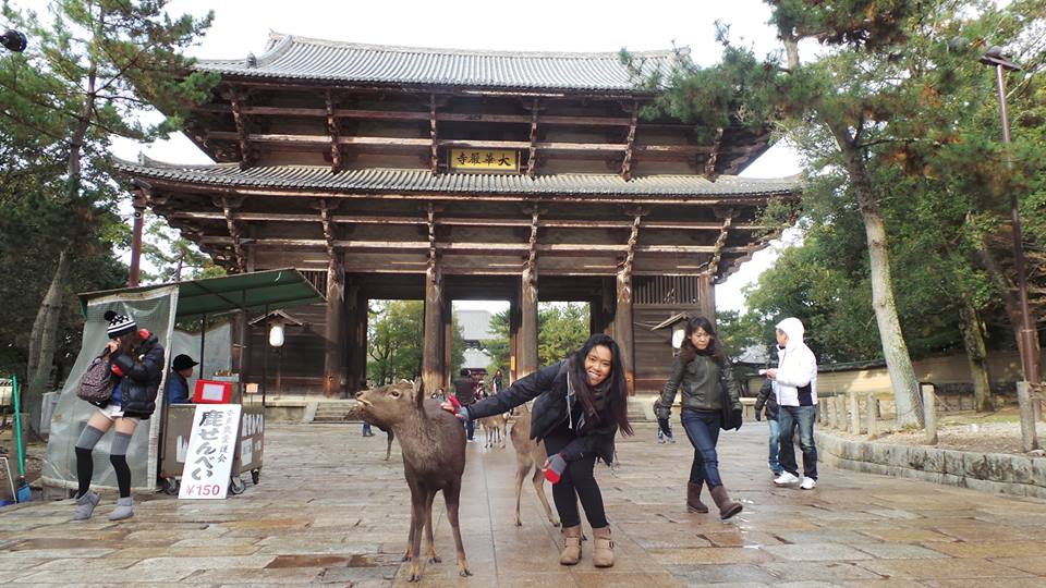 Outside of the world's largest wooden structure, home to the world's largest Buddha ... with a deer. Welcome to Nara, Japan.