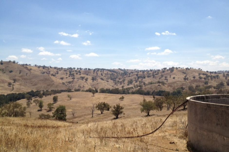 The site of the proposed Needle Dam is between Canowindra and Mandurama south of Orange. Photo courtesy of ABC News.