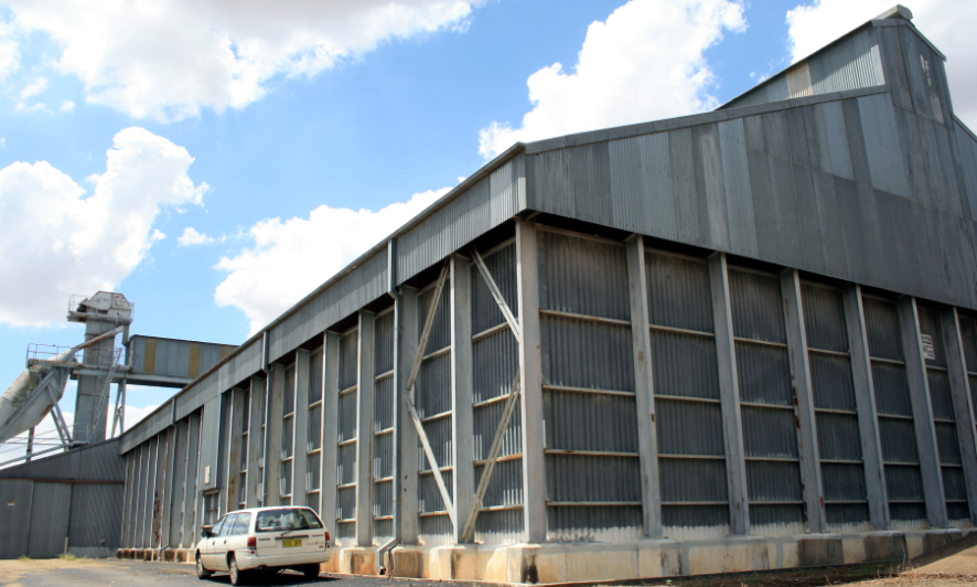 Looking for a future – the vast grain storage shed at the Graincorp silo