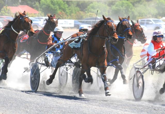 eugowra harness racing