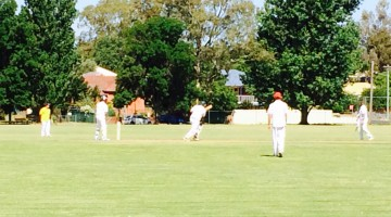 Cricket…Canowindra vs Young Blues