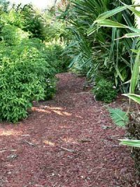 vegetable-garden-mulches-1