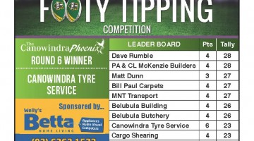 Footy Tipping Results – Round 6