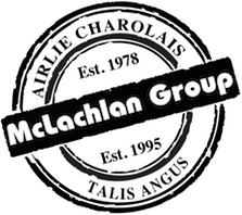 McLachlan Group To Host Annual Bull Sale