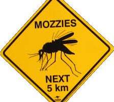Early Detection Of Mosquito-Borne Viruses Prompts Warning