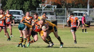 Tigers And Tigresses Go Down To Trundle