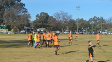 WOODBRIDGE CUP RUGBY LEAGUE