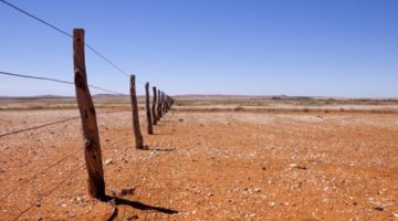 $584 Million To Help Drought-Affected Farmers