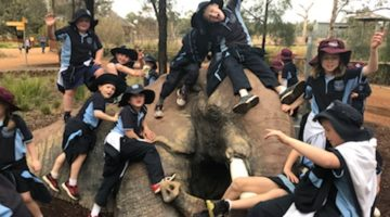 St Edward's Students Go Zoo-Crazy!