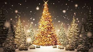 Christmas Festive Season At Moyne